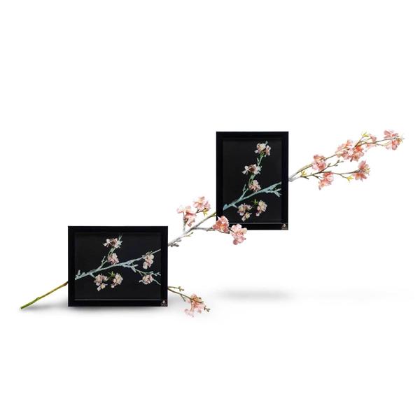 3D Wall Art Modern cherry Blossom Picture