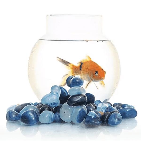 Glossy Onyx Aqua Blue Pebbles 500 Gm